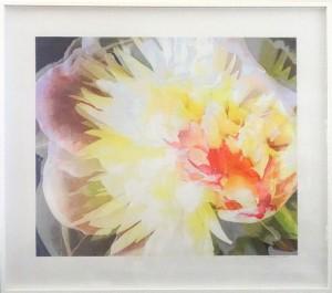 """""""Pioni"""" Fotosec ja väri 95x108 cm"""